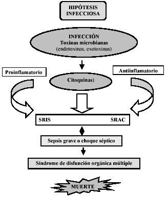 hormonas anabolicas pdf